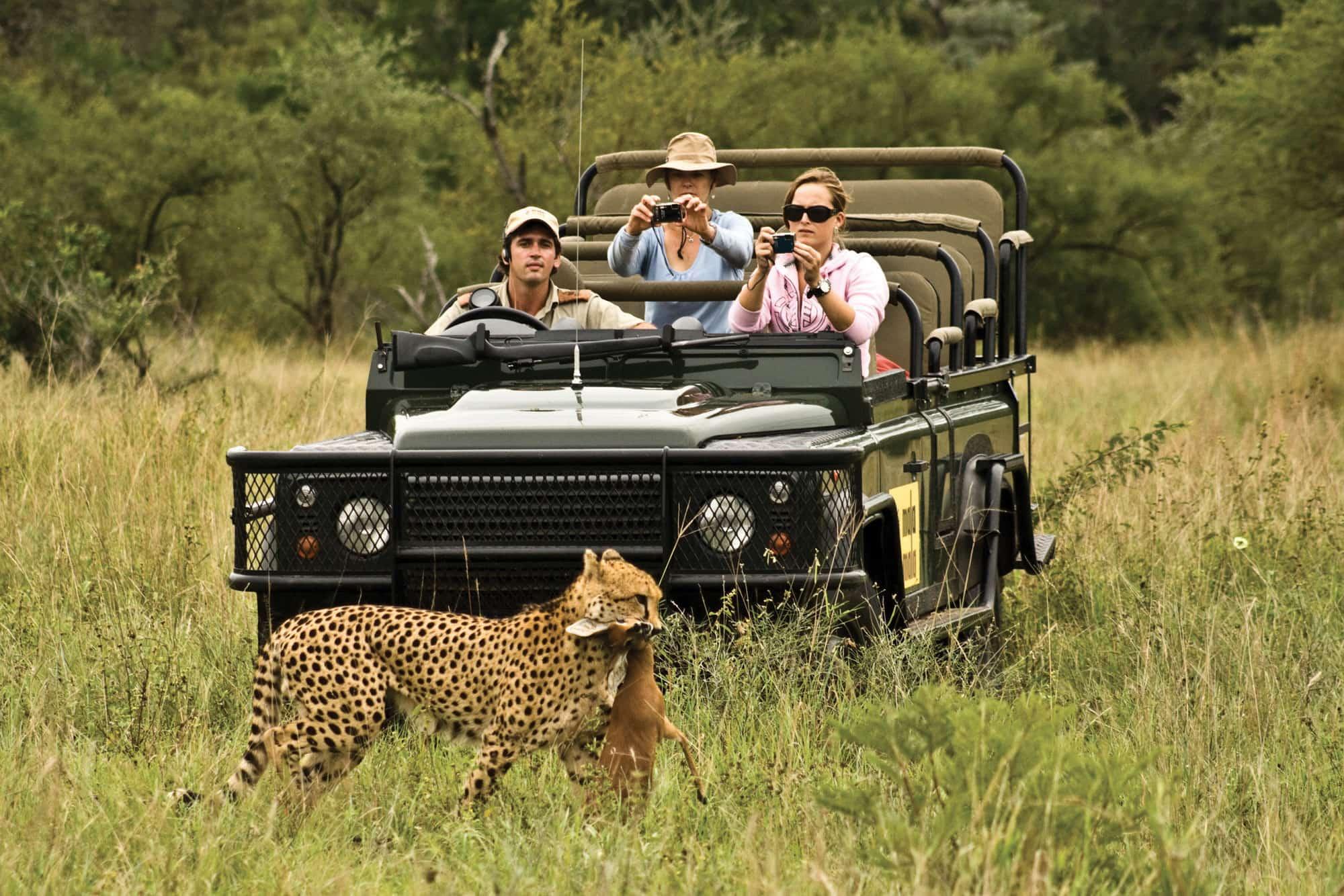 MalaMala Southafrica Travel design
